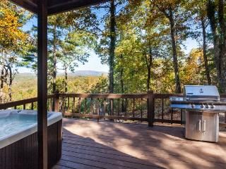 Grand View - Gorgeous Mountain & Sunset Views - Ellijay vacation rentals