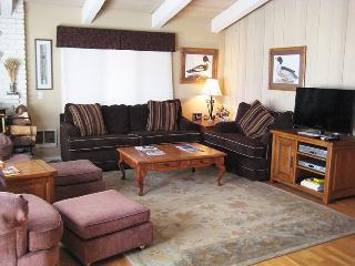 Chateau Sans Nom - CSN25 - Mammoth Lakes vacation rentals