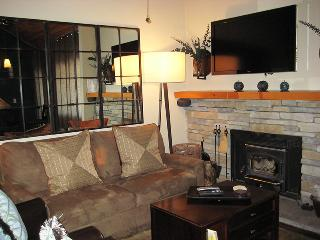 Beautiful Condo with Internet Access and Hot Tub - Mammoth Lakes vacation rentals