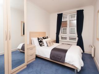 London Bridge Serviced Apartment - London vacation rentals