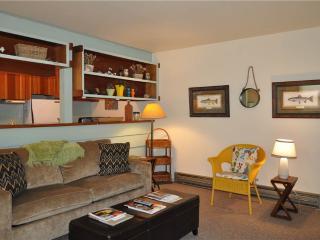 1 bedroom Condo with Deck in Wilson - Wilson vacation rentals