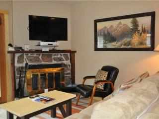 1 bedroom Apartment with Internet Access in Wilson - Wilson vacation rentals