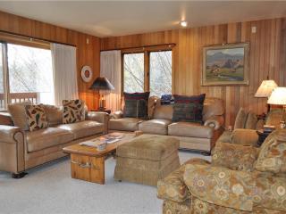 Wind River #10 - Teton Village vacation rentals