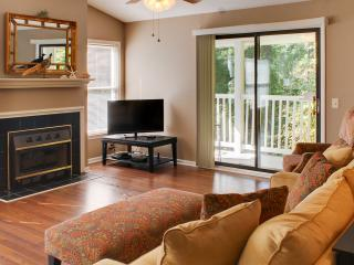 Perfect 2 Bedroom Condo-Book 7 nights-Great Deals! - Greenville vacation rentals