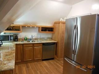 Victorian apt. With Redwood ceiling in Gold Coast. - Alameda vacation rentals