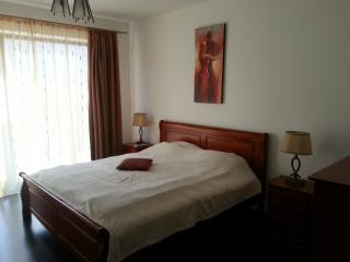 Modern Apartament, Large Terrace, Mountains view - Brasov vacation rentals
