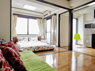 Nippori★NRT 47 mins Direct access!!日暮里・西日暮里・千駄木駅6分 - Bunkyo vacation rentals