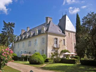Chateau Gombardy and cottage - Beaumont-en-Veron vacation rentals