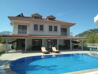 Aktas Villa - Dalyan vacation rentals
