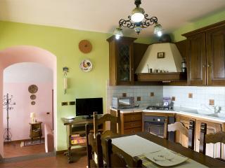 Trasimeno Villa with private pool up to 6 person - Tuoro sul Trasimeno vacation rentals