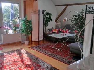 Wohnen mit Flair auf dem Reiterhof in Groß Parin - Bad Schwartau vacation rentals