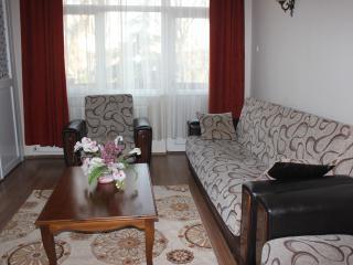 Sahra Apartment - Istanbul vacation rentals