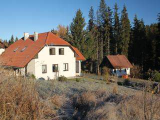 3 bedroom Apartment with Internet Access in Kubova Hut - Kubova Hut vacation rentals