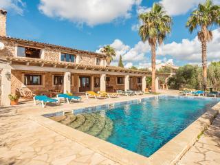 RUSTIC FINCA PORTOCOLOM - Porto Colom vacation rentals