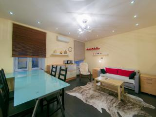 Hermitage SPb Rentals Designed apartment - Saint Petersburg vacation rentals