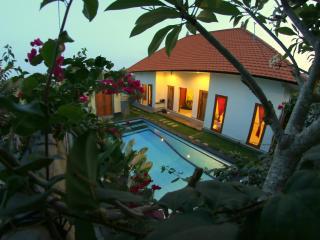 Nice Villa with Internet Access and A/C - Canggu vacation rentals