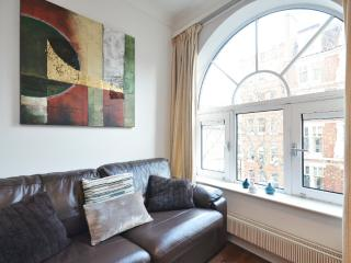 Spacious Leicester Square Apartment, 3 bed - London vacation rentals