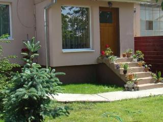 Nice House with Internet Access and Television - Turda vacation rentals