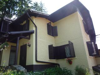 Holiday house in Sinaia, near the Castle,420€/week - Sinaia vacation rentals
