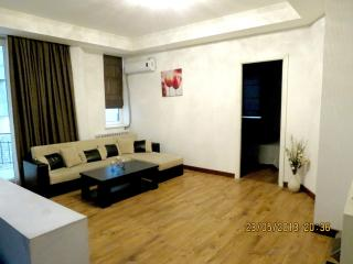 Luxury 2 Bedrooms Apartment in Tbilisi Center - Tbilisi vacation rentals