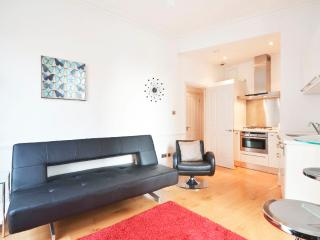 Historic One Bed Apartment In The Heart Of London - London vacation rentals