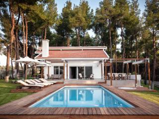 THE WHITE VILLA AT SANI HALKIDIKI GREECE - Halkidiki vacation rentals