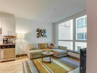 Modern, dog-friendly getaway w/ shared sky lounge & gym, near waterfront! - Seattle vacation rentals