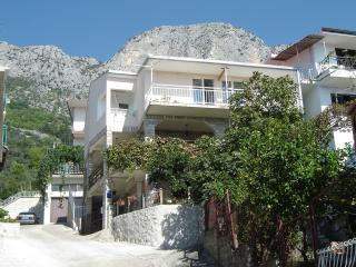 Nice Condo with Internet Access and Balcony - Brist vacation rentals
