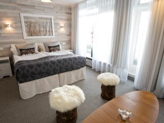 B14 City Centre Guest house #3 - Reykjavik vacation rentals