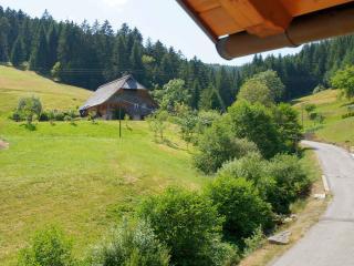 Vacation Apartment in Bad Rippoldsau-Schapbach -  (# 9095) - Bad Rippoldsau-Schapbach vacation rentals