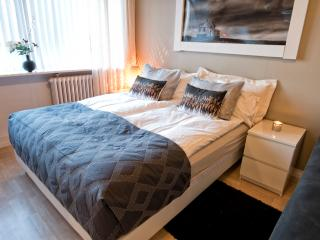 B14 City Centre Guest house #1 - Reykjavik vacation rentals