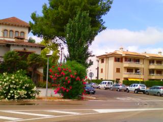 Apartment for Rent and Sale in Baleares, Mallorca. - Port de Pollenca vacation rentals
