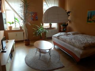 Nice 1 bedroom Dresden Condo with Internet Access - Dresden vacation rentals