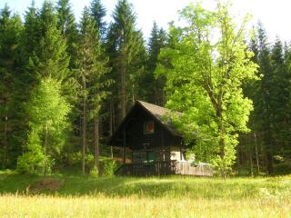 Sunny Chalet with Shared Outdoor Pool and Television - Metnitz vacation rentals