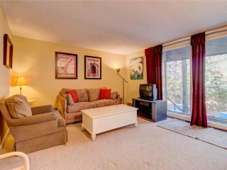 Cozy 2 bedroom Bondville Condo with DVD Player - Bondville vacation rentals