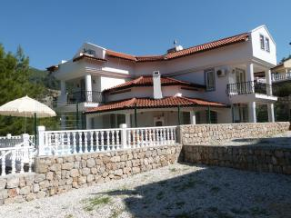 Spacious 6 bedroom Yesiluzumlu Villa with A/C - Yesiluzumlu vacation rentals