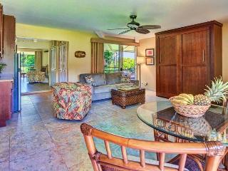 Beautiful Lahaina Apartment rental with Internet Access - Lahaina vacation rentals