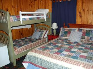 Cozy Cabin on the Lake in the Woods - Scottsboro vacation rentals