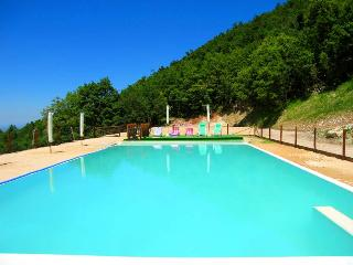 Villa Marianna Country House/sleeps 25, with pool - Spoleto vacation rentals
