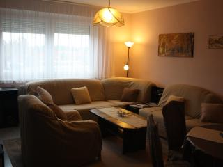 Cozy Condo with Internet Access and Satellite Or Cable TV - Heviz vacation rentals