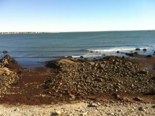 OCEANFRONT , On the Rocks- $175 daily - Fairhaven vacation rentals