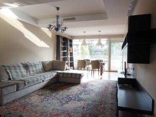 Nice 3 bedroom Apartment in Barcelona with Internet Access - Barcelona vacation rentals