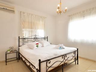 Perfect 5 bedroom House in Golan Heights - Golan Heights vacation rentals
