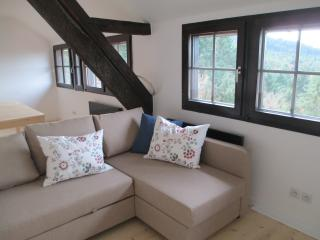 LUMINEUX APPARTEMENT 6 PERS. DS MANOIR EN FORET - Thannenkirch vacation rentals