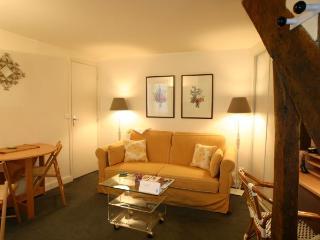 Fabulous  Rive Gauche Feeling! - Paris vacation rentals