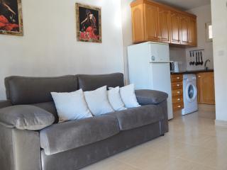 Acuarium III - one bed apartment fourth floor - Benidorm vacation rentals