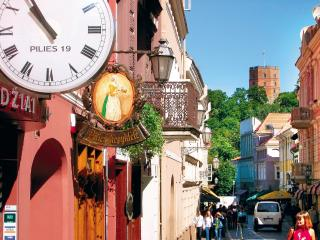Best location in the Old Town (Centre) - Vilnius vacation rentals