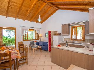 Bright 2 bedroom House in Gaios - Gaios vacation rentals