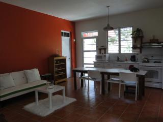 Garden Studio Apartment in Quebradillas. - Quebradillas vacation rentals