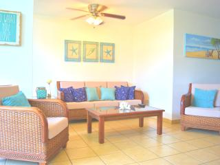 Beautiful Aquatika PH with A/C in all areas & more - Loiza vacation rentals